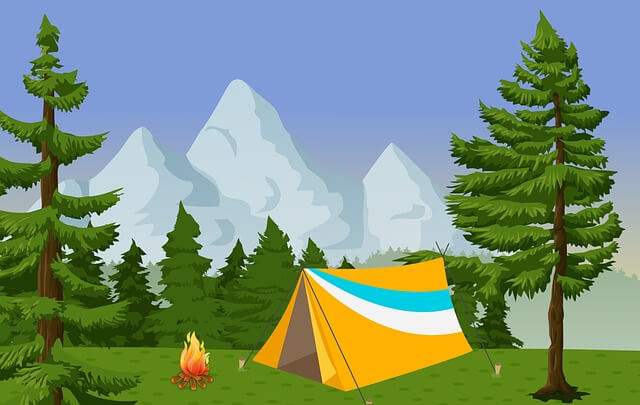A Camping Guide For Beginners - Forest